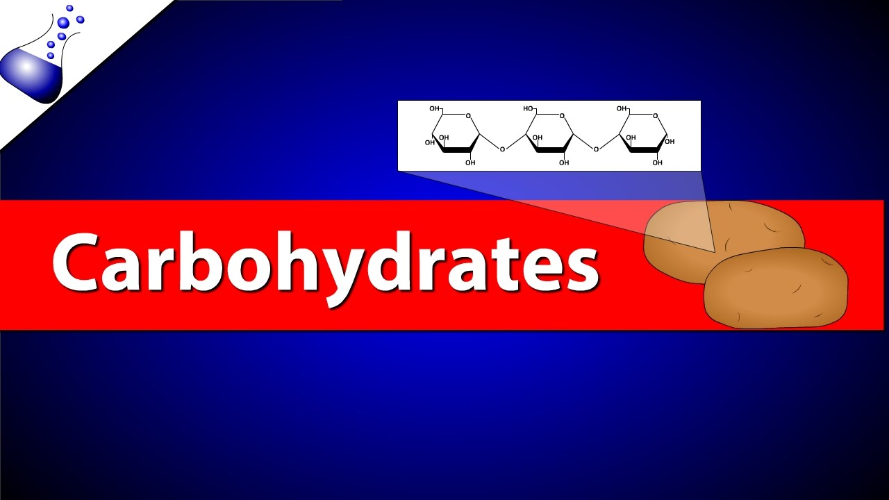 Carbohydrates | Video